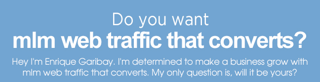 mlm web traffic that converts?